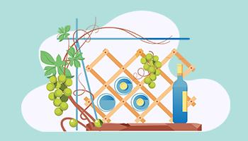 Assurance cave à vin de l'agence  Allianz Perpignan palmarium - Nathalie GALTE